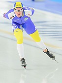 Subject: David Andersson; Tags: Athlet, Athlete, Sportler, Wettkämpfer, Sportsman, David Andersson, Eisschnelllauf, Speed skating, Schaatsen, Herren, Men, Gentlemen, Mann, Männer, Gents, Sirs, Mister, SWE, Sweden, Schweden, Sport; PhotoID: 2013-12-08-0159