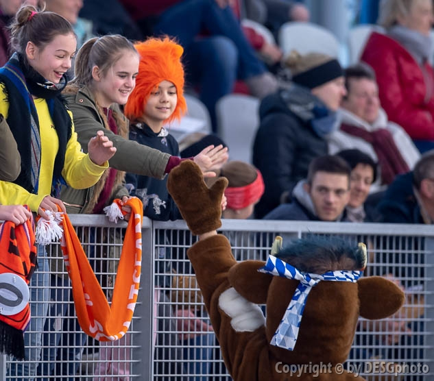 Tags: Detail, Eishockey, Icehockey, Eisschnelllauf, Speed skating, Schaatsen, Maskotchen, Sport, Zuschauer, Visitor, Beobachter, Publikum, Schaulustiger, Besucher, Spectator, Viewer, Watcher; PhotoID: 2019-02-10-0170